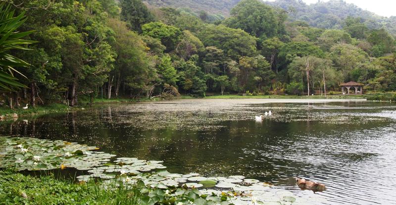 A natural reserve near Matagalpa, La Selva Negra