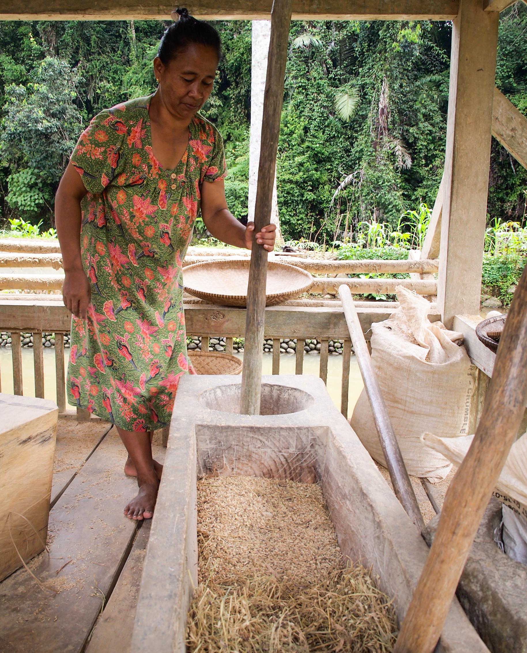 pounding rice in Kampung Naga Tasikmalaya