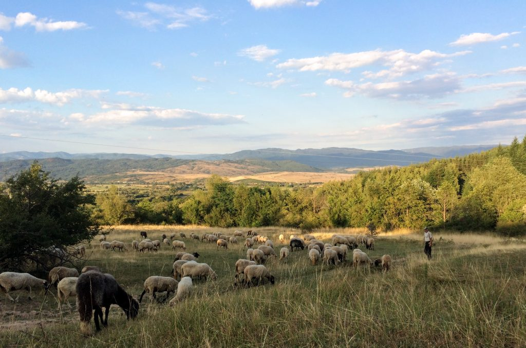Bansko countryside