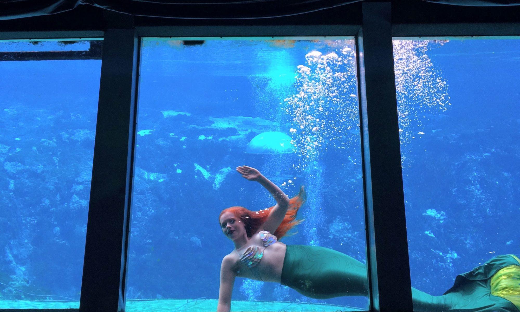 Mermaid passing by